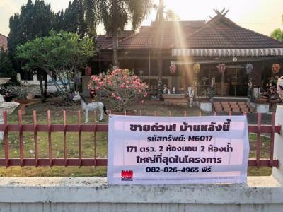 """ขายบ้านเชียงใหม่ : """"ขายบ้านเดี่ยว หมู่บ้านนพเก้า สันทราย บ้านชั้นเดียว 171 ตรว. พื้นที่ใช้สอย 129 ตรม. ถูก สภาพดี ใกล้โรงพยาบาลดอยสะเก็ด"""""""