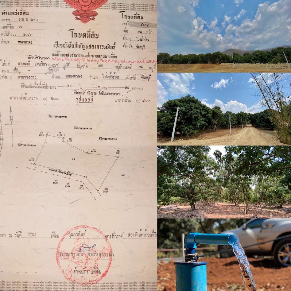 ขายที่ดินจันทบุรี : ขายที่ดินสวนลำไย 26 - 1 - 78 ราคา 13 ล้าน ( เจ้าของขายเอง )