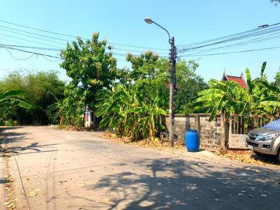 For SaleLandLadkrabang, Suwannaphum Airport : Land for sale near the waterfront, beautiful plot, 1 rai, Lad Krabang Road, near Airport Link, near Robinson