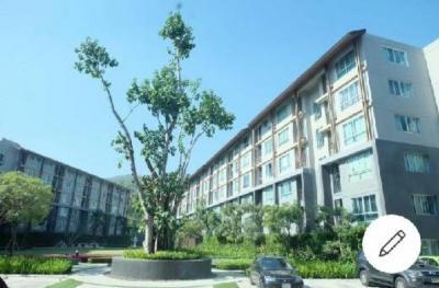 For RentCondoChiang Mai, Chiang Rai : ให้เช่า (For rent) D Condo campus resort chiangmai (ดีคอนโด แคมปัส รีสอร์ท เชียงใหม่) 7500 บาทต่อเดือน ด่วน!! เข้าอยู่ทันที