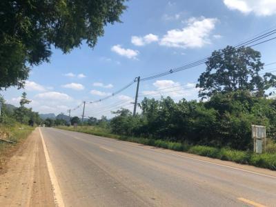 เช่าที่ดินโคราช เขาใหญ่ : ให้เช่าที่ดินเขาใหญ่ 100 ไร่ หน้ากว้างติดถนน 335 เมตร ลึกประมาณ 500 เมตร ที่ดินรูปแปลงเป็นสี่เหลี่ยมผืนผ้าขนาดใหญ่