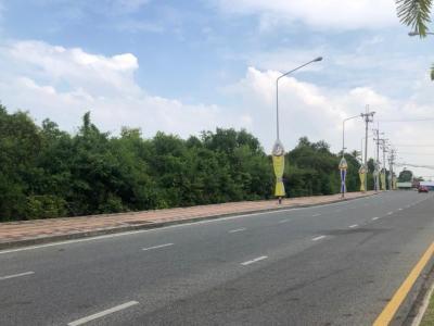 เช่าที่ดินพัทยา บางแสน ชลบุรี : ให้เช่าที่ดินพัทยา เนื้อที่ 33 ไร่กว่า หน้ากว้างติดถนนสุขุมวิท 130 เมตร ด้านข้างติดถนนจอมเทียนสายสอง 328 เมตร