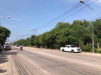 เช่าที่ดินพัทยา บางแสน ชลบุรี : ให้เช่าที่ดินพัทยาประมาณ 43 ไร่ หน้ากว้างติดถนนชัยพฤกษ์ประมาณ 280 เมตร