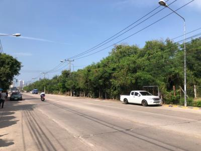 For RentLandChonburi, Pattaya, Bangsa : Land for rent in Pattaya around 43 rai, width 280 meters on Chaiyapruek Road