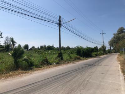 เช่าที่ดินฉะเชิงเทรา : ให้เช่าที่ดินบางปะกง ใกล้กับมอเตอร์เวย์  เนื้อที่ 5 ไร่ หน้ากว้างติดถนน 80 เมตรทางเข้าอยู่บริเวณวัดเขาดิน (จุดพักรถมอเตอร์เวย์) ใกล้เขตนิคมอุตสาหกรรมตามผังสีของ EEC