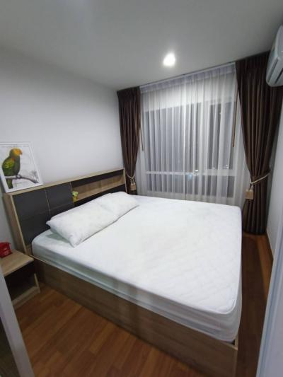 For RentCondoOnnut, Udomsuk : For Rent Regent Home Sukhumvit 81, Building A, 8th floor, Airy view, BTS view, Onnut 700m