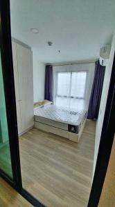 For RentCondoKasetsart, Ratchayothin : A1058 ++RENT++ Kensington Kaset Campus | 1 bed plus ขนาด 30.78 ตรม. ตกแต่งพร้อมอยู่ *BTS บางบัว