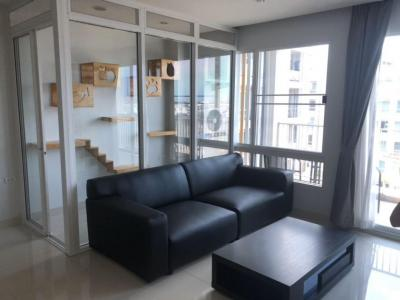 For RentCondoLadprao101, The Mall Bang Kapi : (For rent) condo, can raise animals. With a room for dogs and cats Swimming pool view, Happy Condo, Ladprao 101, South Building, Floor 5