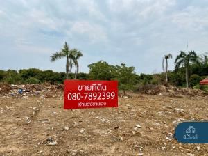 For SaleLandLamphun : Land for sale in a village project Lamphun Country Home