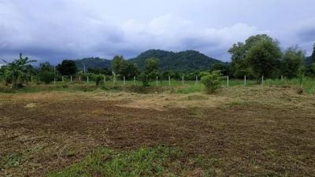 For SaleLandNakhon Nayok : Land for sale 8 Rai, Mueang District, Nakhon Nayok Province (Nor Sor 4 title deed) near Phu Karen Learning Center
