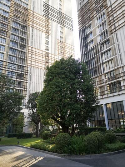 For SaleCondoSukhumvit, Asoke, Thonglor : The unit has never been lived in Park 24 BTS Phrom Phong.