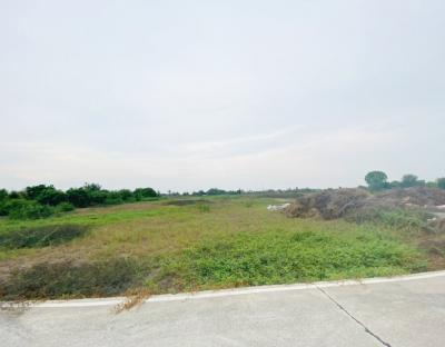 For SaleLandBangbuathong, Sainoi : Land for sale and reclamation. Urgent !!! Khun Si, Sai Noi, No. 6-2-30 Rai, near Sai Noi District Office