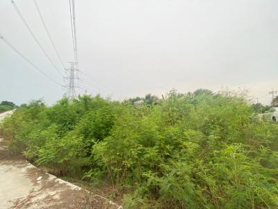 For SaleLandBangbuathong, Sainoi : Land for sale and reclamation. Urgent !!! Khun Si, Sai Noi, at 6-3-41 Rai, near Sai Noi District Office Close to Nonthaburi Rural Road 3017