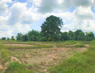 For SaleLandUdon Thani : Land for sale 9 rai, near Udonthani Rajabhat University (Sam Phrao), Udon Thani FC, Udon Thani Hospital Center