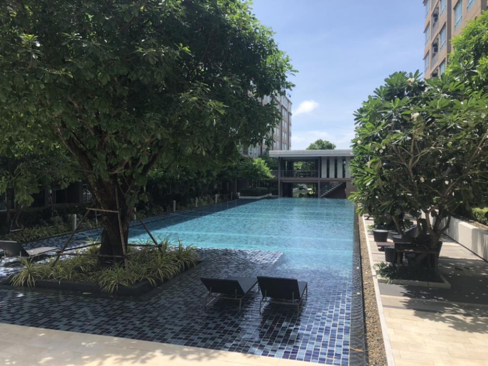 For SaleCondoPhuket, Patong, Samui, Hat Yai, Phang nga : For Sale📌 D Condo Kuku, Phuket Town