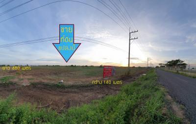 ขายที่ดินฉะเชิงเทรา : ขาย ที่ดินเปล่า 34 ไร่ 3 งาน 11 ตารางวา ติดถนนมอเตอร์เวย์ ฝั่งขาเข้า ใกล้ด่านเก็บเงินบางปะกง หรือถนนกรุงเทพ-ชลบุรี สายใหม่ ทำเลดี เหมาะกับการลงทุน หรือ ซื้อไว้เก็งกำไร อยู่ในพื้นที่ EEC