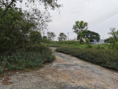 เช่าที่ดินรังสิต ธรรมศาสตร์ ปทุม : ให้เช่า ที่ดินลำลูกกา ปทุมธานี ตรงข้ามบิ๊กซี ลำลูกกาคลอง 5 เนื้อที่ 10 ไร่ ติดถนนใหญ่ ทำเลดีมาก