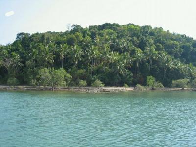 ขายที่ดินภูเก็ต ป่าตอง : ขายที่ดินริมหาดเกาะปอ อำเภอเกาะลันตา กระบี่ ใกล้เกาะลันตาใหญ่ เนื้อที่ 3- 3-4 ไร่