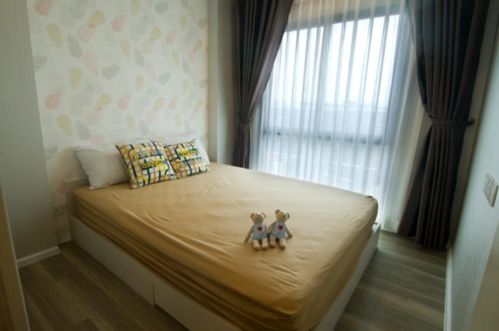 For RentCondoKasetsart, Ratchayothin : high floor openview fully furnished