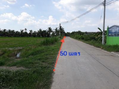 For SaleLandRangsit, Patumtani : Beautiful land for sale 19 rai 99 wah, Lad Lum Kaeo, Pathumtani, more than 50 meters adjacent to the concrete road, good atmosphere