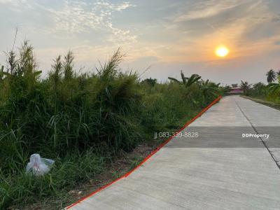 For SaleLandRangsit, Patumtani : Land for sale in Ban Pathum, Sam Khok, Onnut Thong Road. 12.5 Rai