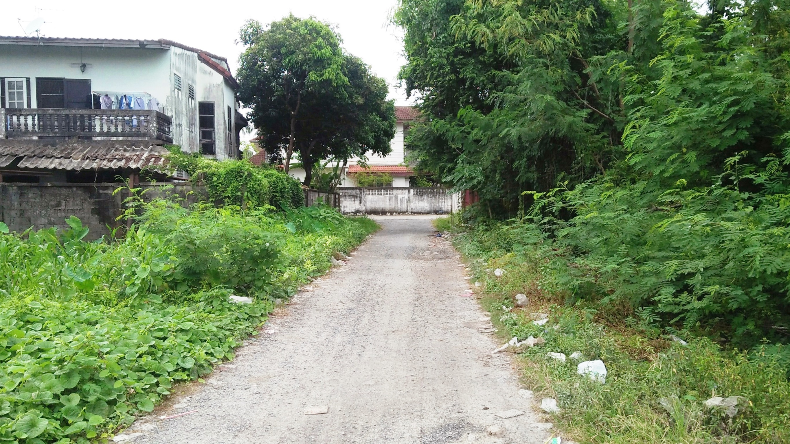 For SaleLandPinklao, Charansanitwong : Land for sale, Suan Pak Taling Chan Road, rectangular, good location