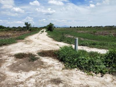 ขายที่ดินพัทยา ชลบุรี : ขายที่ดินเปล่า 40 ไร่ 50 ตารางวา  ถนนบ้านเก่า 3466  ต.บางนาง อ.พานทอง จ.ชลบุรี