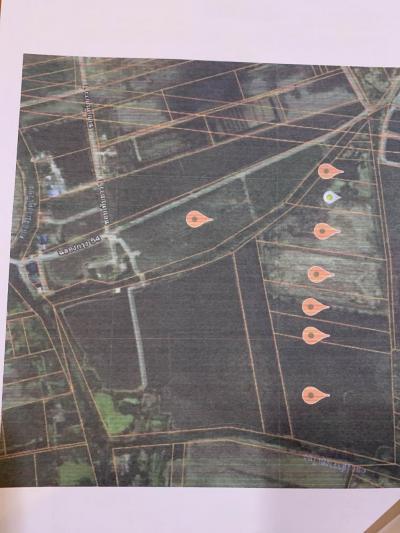 For SaleLandLadkrabang, Suwannaphum Airport : ขายที่ดิน 91 ไร่ ซ.ฉลองกรุง 54 ไร่ละ 2.2 ล้าน ถูกมาก