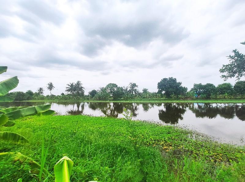For SaleLandLadkrabang, Suwannaphum Airport : Land for sale (at Bueng) 1-2-64 Rai, Thap Yao Subdistrict, Lat Krabang District, Bangkok