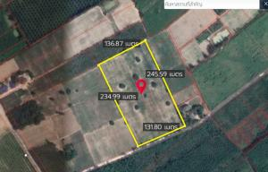 For SaleLandPattaya, Bangsaen, Chonburi : Tapioca Land for Sale 20 Rai 43 Sq. Wah, Amphoe Thong Thong, Chon Buri Province