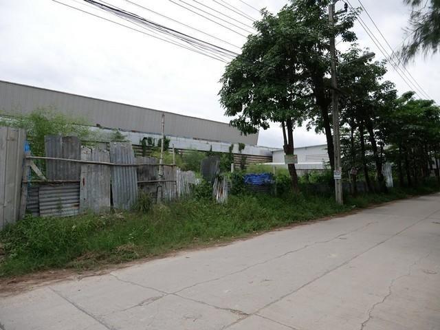 For RentLandLadprao101, The Mall Bang Kapi : Land for rent, 1 rai, Ladprao 101. Soi Pho Kaeo 3 Suitable for a factory warehouse