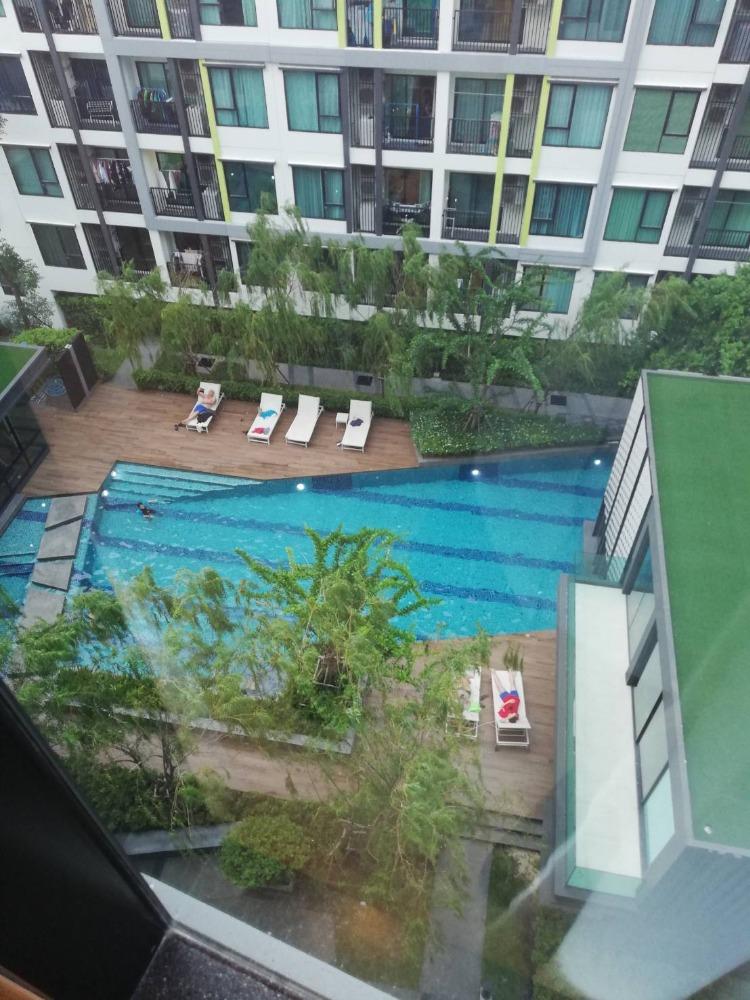 For RentCondoOnnut, Udomsuk : Condominium the niche mono sukhumvit 50 for rent