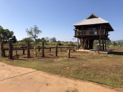 ขายบ้านเชียงราย : ขายบ้านไม้ 2 หลัง พร้อมที่ดินพร้อมโฉนด 1 ไร่ 17 ตารางวา อ. เมือง จ. เชียงรายที่ดินเเละบ้านอยู่โซนใกล้โรงเรียน ศูนย์การเเพทย์ เเม่ฟ้าหลวงหน้าที่ดินมีเเม่น้ำเล็กๆ หลังที่ดินมีทางออก ไปถนน บายพลาสที่ดินข้างเคียงรอบๆ เป็นบ้านอาศัย เเพทย์ นักศึกษาเเพทย์