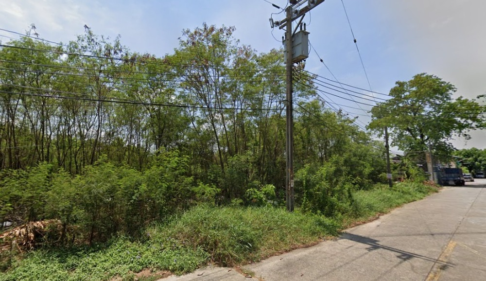 For SaleLandBang kae, Phetkasem : Land for sale 318 square wa, Phutthamonthon Sai 2 (with property)