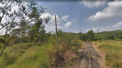 ขายที่ดินมีนบุรี-ร่มเกล้า : ขายที่ดินเปล่า ด่วน!!!  ซ.5/8 หมู่บ้านกฤษดานคร 25 ซ.ประชาร่วมใจ 31 เนิ้อที่ 365 ตร.ว.