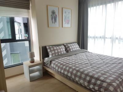 For RentCondoBangna, Lasalle, Bearing : A1382 ++ RENT ++ Ideo O2 | 2 bed 2 bath size 53 sqm. * BTS Bangna