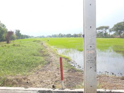 เช่าที่ดินลาดกระบัง สุวรรณภูมิ : ให้เช่าที่ดินระยะยาว