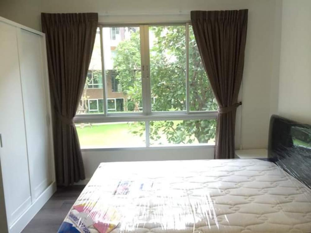 For RentCondoRangsit, Patumtani : For rent D Condo Campus Resort Rangsit