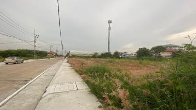 For RentLandPattaya, Bangsaen, Chonburi : [17 June 2564] for rent, 195 square wa of land, Montasewi 3/2, Mueang Mai, Phraya Satcha, Chonburi.