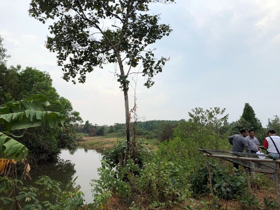 For SaleLandTrat : Land for sale along the river Weru River 1000 rai near the main road, Khao Saming District, Trat