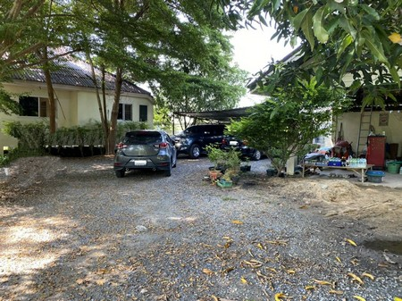 For SaleHouseCentral Provinces : Two houses with land for sale Phra Nakhon Si Ayutthaya Province, total area of 1 rai 13 square wah