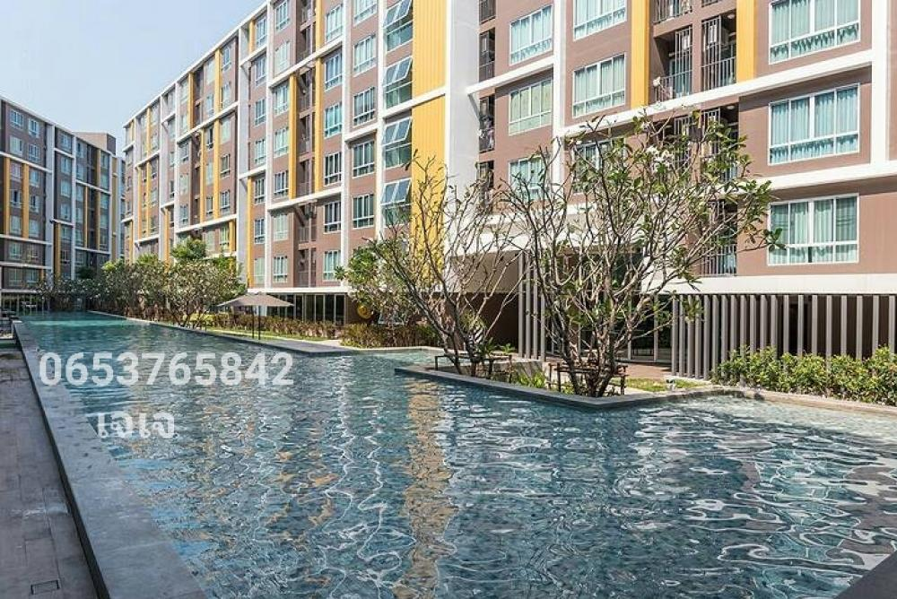 For SaleCondoChonburi, Pattaya, Bangsa : Sale with tenant Dcondo campus resort bangsaen.
