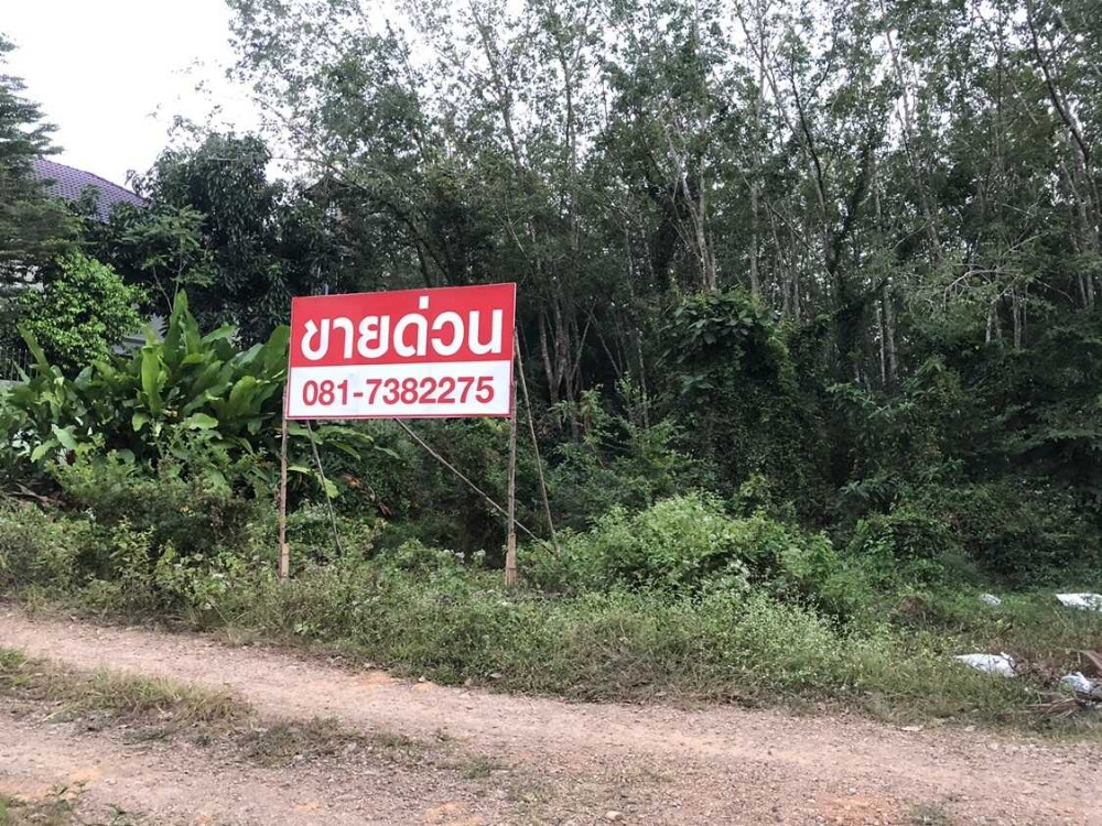 For SaleLandSongkhla : Quick sale !!! Land area 94 square wah, Ban Nong Nai Khui Not far from the main road, Lop Buri Ramet.