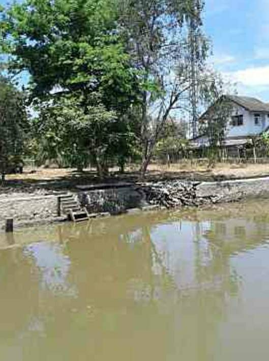 For SaleLandSamut Songkhram : Land for sale next to Khlong Amphawa, area 2-0-73, Next to a canal up to 40 meters long, beautiful square plot, Price less than 10 million per rai