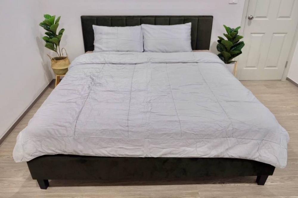For RentCondoOnnut, Udomsuk : 🔥🔥 New !!  Condo for rent, Regent Home Sukhumvit 97/1, size 56 sqm., 6th floor #, near BTS Bang Chak code 4716