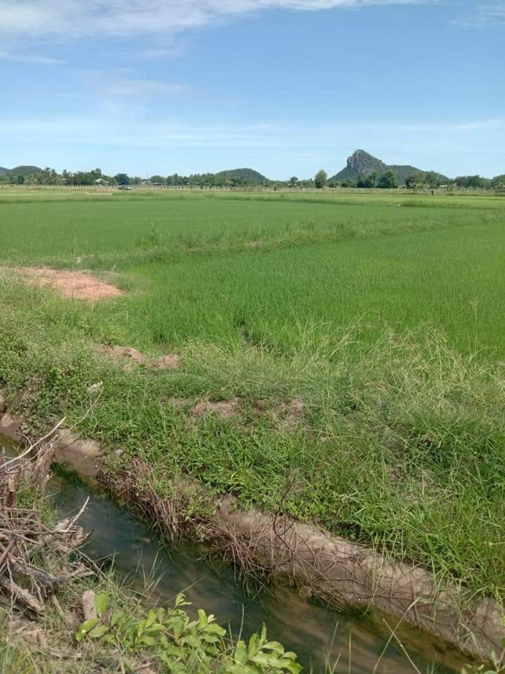 For SaleLandRatchaburi : Land for sale with beautiful mountain views, 2 rai, 2 ngan, Photharam, Ratchaburi