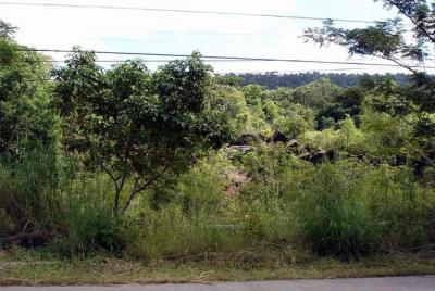 ขายที่ดินตราด : ขายที่ดิน 12 ไร่ ติดถนนสุขุมวิท คลองใหญ่ จ.ตราด