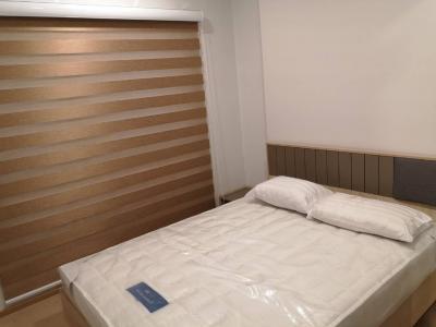 For RentCondoSukhumvit, Asoke, Thonglor : !! Beautiful room for rent, The Tree Sukhumvit 71 (The Tree Sukhumvit 71), near Airportlink Ramkhamhaeng