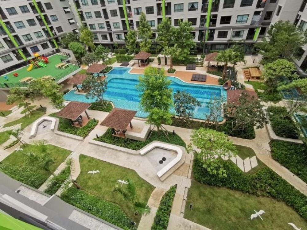 For SaleCondoVipawadee, Don Mueang, Lak Si : Condo for sales / rent