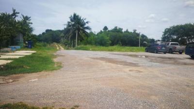 ขายที่ดินนครปฐม พุทธมณฑล ศาลายา : ขายที่ดินแปลงสวย 14ไร่ ติดน้ำ ติดถนนศาลายา-บางเลน พุทธมณฑลนครปฐม